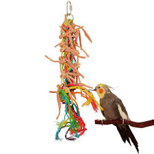 parrot toys northern parrots feather plucking large image