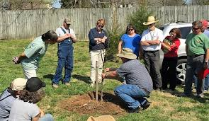 extension service is enrolling for 2018 master gardener classes