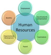 Csu Organizational Chart Home Human Resources Chicago State University