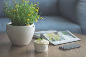Office Flower Diy 10 Easy Flower Arrangements For Your Office Desk