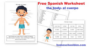 Free Spanish Worksheet: Parts of the Body – El Cuerpo - Homeschool Den