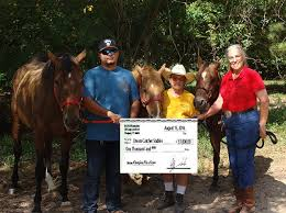 Dream Catcher Stables MotherDaughter volunteer team win 100100 grant for equine rescue 59