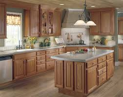 Kitchen Cabinet Lighting Options Enchanting Types Of Kitchen Cabinets Finishes Cabinet Covers