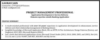 Resume Format For It Project Managers With Sample