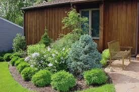 Small Picture Garden Shrubs Garden Shrubs Climbing Plants Flowering Shrubs