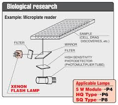 Xenon Flash Lamp