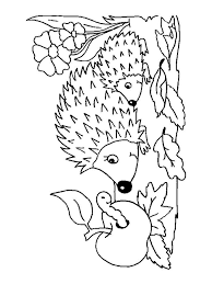 Small Picture Hedgehog coloring pages Download and print hedgehog coloring pages