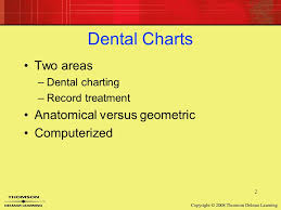 14 Dental Charting Ppt Video Online Download