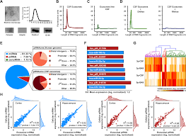 Stages Of Alzheimer S Disease Chart A Combined Mirna Pirna Signature To Detect Alzheimers