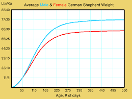 German Shepherd Weight Chart Sop Examples