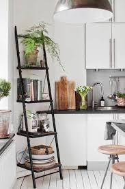 Apartment:Ladder Shelves Surprising Small Apartmentrniture Ideas Picture  Design Best Kitchen Decorating On Pinterest 40