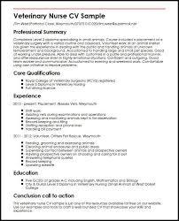 Cv For Experienced Veterinary Nurse Cv Sample Myperfectcv