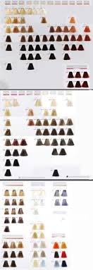 Goldwell Hair Color Chart 2014 86 Best Hair Colour Chart Images In 2019 Hair Color Hair
