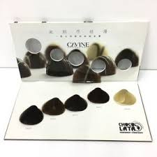 6 Shades Dye Color Swatch Hair Color Chart