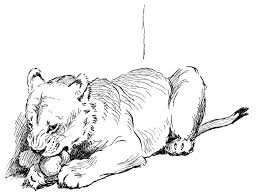 Small Picture Lion Coloring Pages Printable Great Lion Coloring Pages For