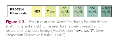 Multistix Color Chart Figure 4 3 From Chemical Analysis Of Urine Key Terms