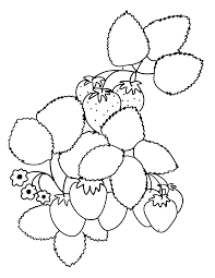Free Printable Fresh June Strawberry Coloring Page