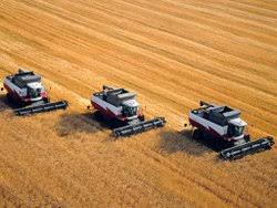 Сельское хозяйство России Русский эксперт Уборка пшеницы в Ростовской области