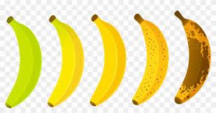 Lavida Banana The Banana Paradise Banana Ripeness Chart