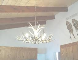 full size of small deer antler chandelier white uk photo gallery of viewing 5 photos home