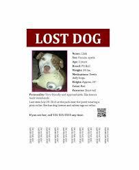 Lost Pet Flyer Maker Beauteous 48 Lost Pet Flyers [Missing Cat Dog Poster] Template Archive