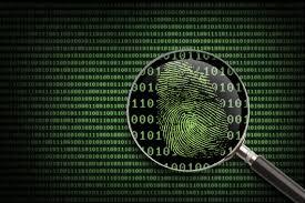Fraud IdentityTheft3