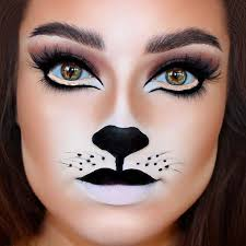 cat face makeup idea for