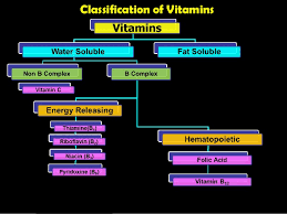 Water Soluble And Fat Soluble Vitamins Chart Water Soluble Vitamins