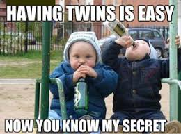 Twin memes - Multiples and Twins - WhatToExpect.com via Relatably.com