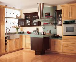 Customized Kitchen Cabinets Beauteous Kitchen Cabinets Buying Guide