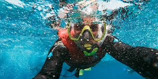 The Best Snorkel Gear For Your Vacation Masks Fins What
