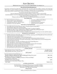Real Estate Sales Manager Job Description For Resume Best Resume