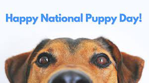 National Puppy Day 2021 |