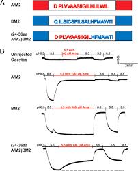 Phenergan Dosage Chart Phenergan Priceline Phenergan Elixir Otc