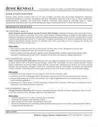 Resume Key Account Manager Resume