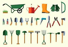 12 essential gardening tools for the
