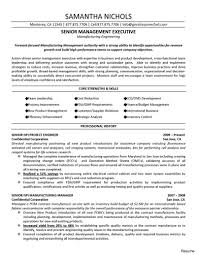 Sample Resume For Project Manager In Manufacturing Project Manager Resume Samples Project Manager Cv Template Resume 1