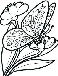 Free Coloring Pages Flowers And Butterflies At Getdrawingscom