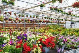 landscape garden center in louisville