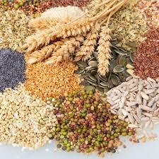 Zdjęcia stockowe: nasiona, odmiana pszenicy, nasion | Depositphotos