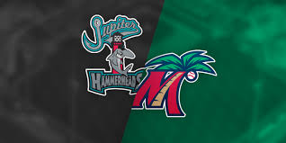 Fort Myers Miracle Stadium Seating Chart 4 6 17 Jupiter Hammerheads Vs Fort Myers Miracle Roger