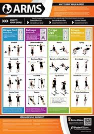 Arm Exercise Poster