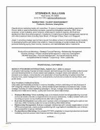 Financial Resume Examples Beauteous ☠ 48 Financial Services Resume Template