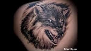 тату волка на плече значение на зоне фото
