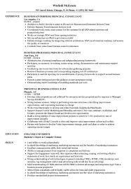 Sap Bpc Consultant Resume Resume essays about life