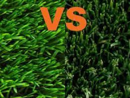 Artificial grass vs turf Tree Quora Natural Turf Vs Synthetic