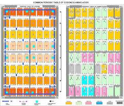 File Common Periodic Table Of Codons Amino Acids Jpg