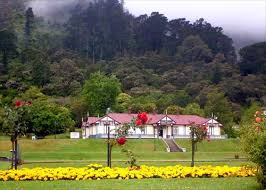Image result for te Aroha views