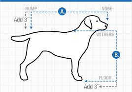 dog crates size chart measuring your dog for variocage 4x4 north america