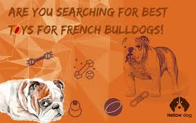 are you searching for best toys for french bulldogs